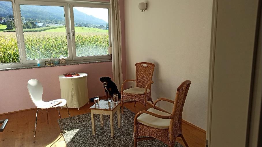 Hundegestützte Psychotherapie - Praxis für Physiotherapie Aldrans - Andrea Reiter - Psychotherapeutin