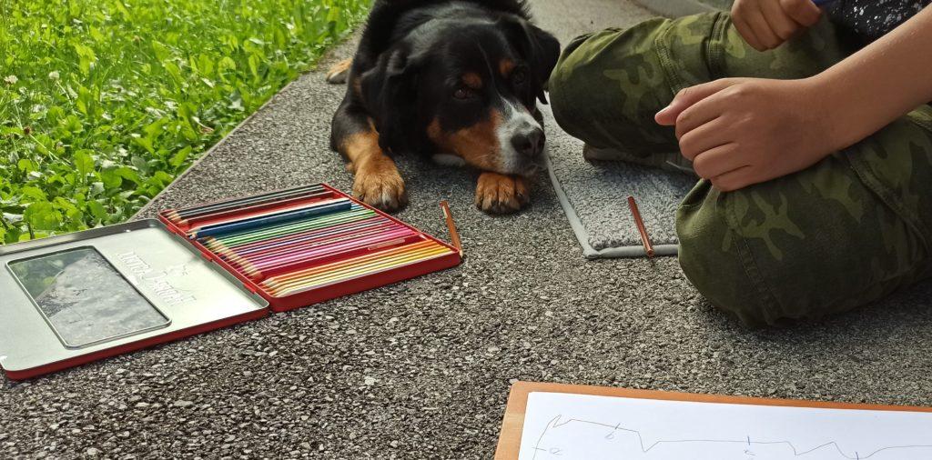 Hundegestuetzte Psychotherapie